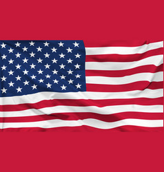 flag united states america vector image