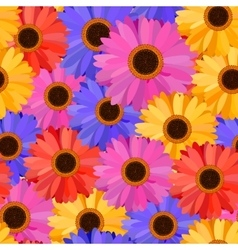 Gerbera Seamless Pattern Floral Background vector image