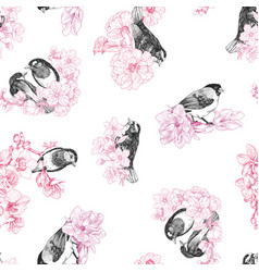 seamless pattern birds hand drawn in vintage vector image