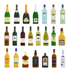 big set of different bottles vector image vector image