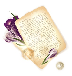 old letter with crocus vector image vector image