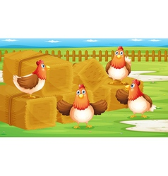 A farm with four hens inside the fence vector