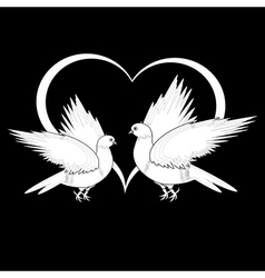 A monochrome sketch of two flying doves vector image
