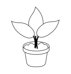 Plant in pot cartoon isolated in black and white vector