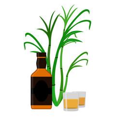 rum set alcohol drink glasses shots rum bottle vector image