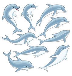 Set of blue dolphins vector