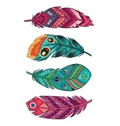 set of colored ornate decorative feathers vector image vector image