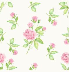 Watercolor hand drawn pink english rose seamless vector