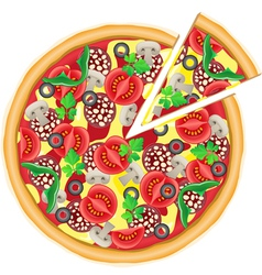 pizza and cut piece isolated on white background vector image