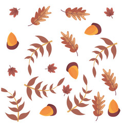 acorns and leaves decoration background vector image