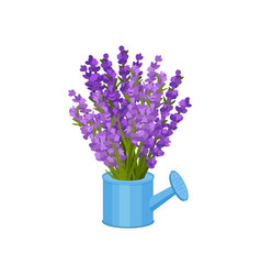Bouquet flowers in a watering can vector