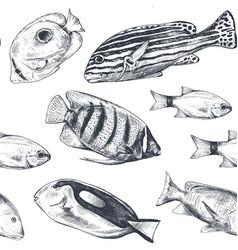 monochrome seamless sea pattern vector image
