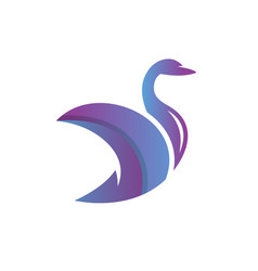 swan animal modern logo vector image