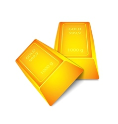 Two gold bar vector