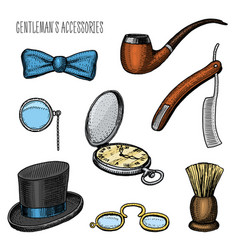 gentleman accessories hipster or businessman vector image