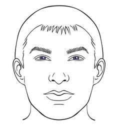 men face chart vector image