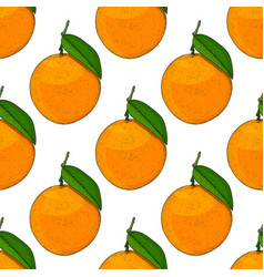 oranges hand drawn colored sketch as seamless vector image vector image