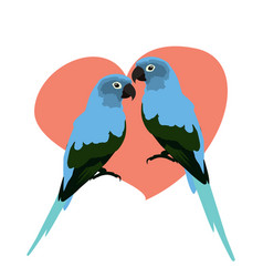 Animal clip art a pair crooked parakeets vector