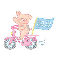 pig rides a bike vector image