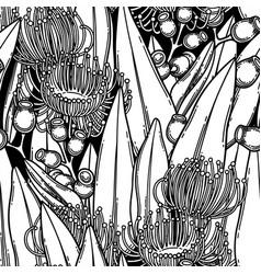 seamless pattern graphic eucalyptus flowers vector image