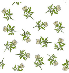 seamless pattern with chinese white peony vector image