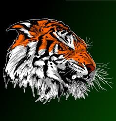 Tiger Art vector