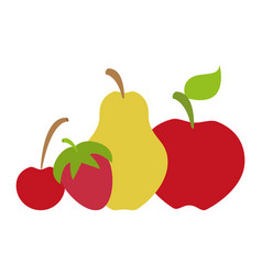 apple pear cherry strawberry vector image