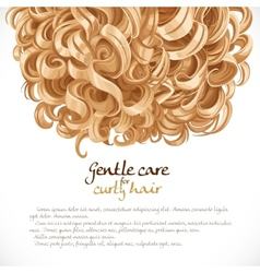 Blond curled hair background vector image