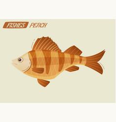 fish character cartoon vector image