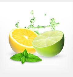 Fresh lime and lemon vector
