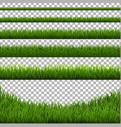 grass border set isolated vector image vector image