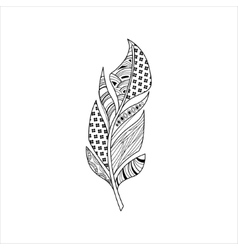 Vaned feather entangle for coloring vector