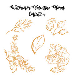 watercolor valentine floral collection vector image