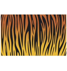 tiger skin texture background vector image vector image