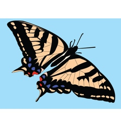 butterfly with background vector image