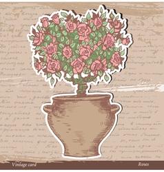 Bush of roses vector image