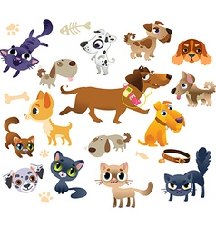 Collection of cats and dogs vector