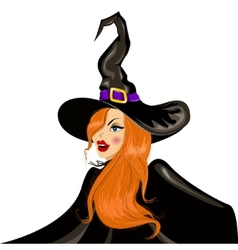 halloween witch in the hat vector image