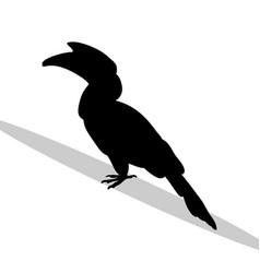 hornbill bird black silhouette animal vector image vector image