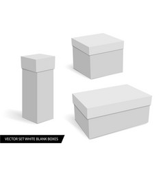 collection of various white blank boxes vector image