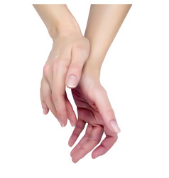 female hand on a white background vector image