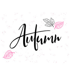 hand lettering text about autumn vector image