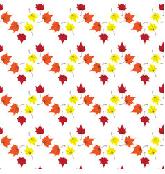 maple leaves seamless white red art vector image