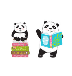 panda bear reading books vector image