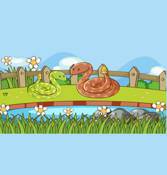 Scene with two rattle snakes in garden vector