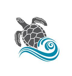 sea turtle icon vector image