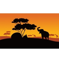 Silhhouette of elephant in park vector image