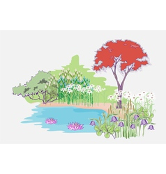 Garden with maple vector image vector image