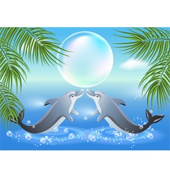 Dolphins leaps from water vector image