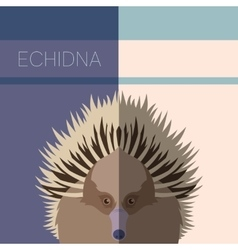 Echidna Flat Postcard vector image